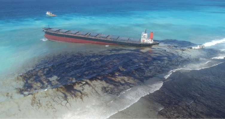 A Community Based Approach To Mitigating Environmental Disasters: The Mauritius Oil Spill.