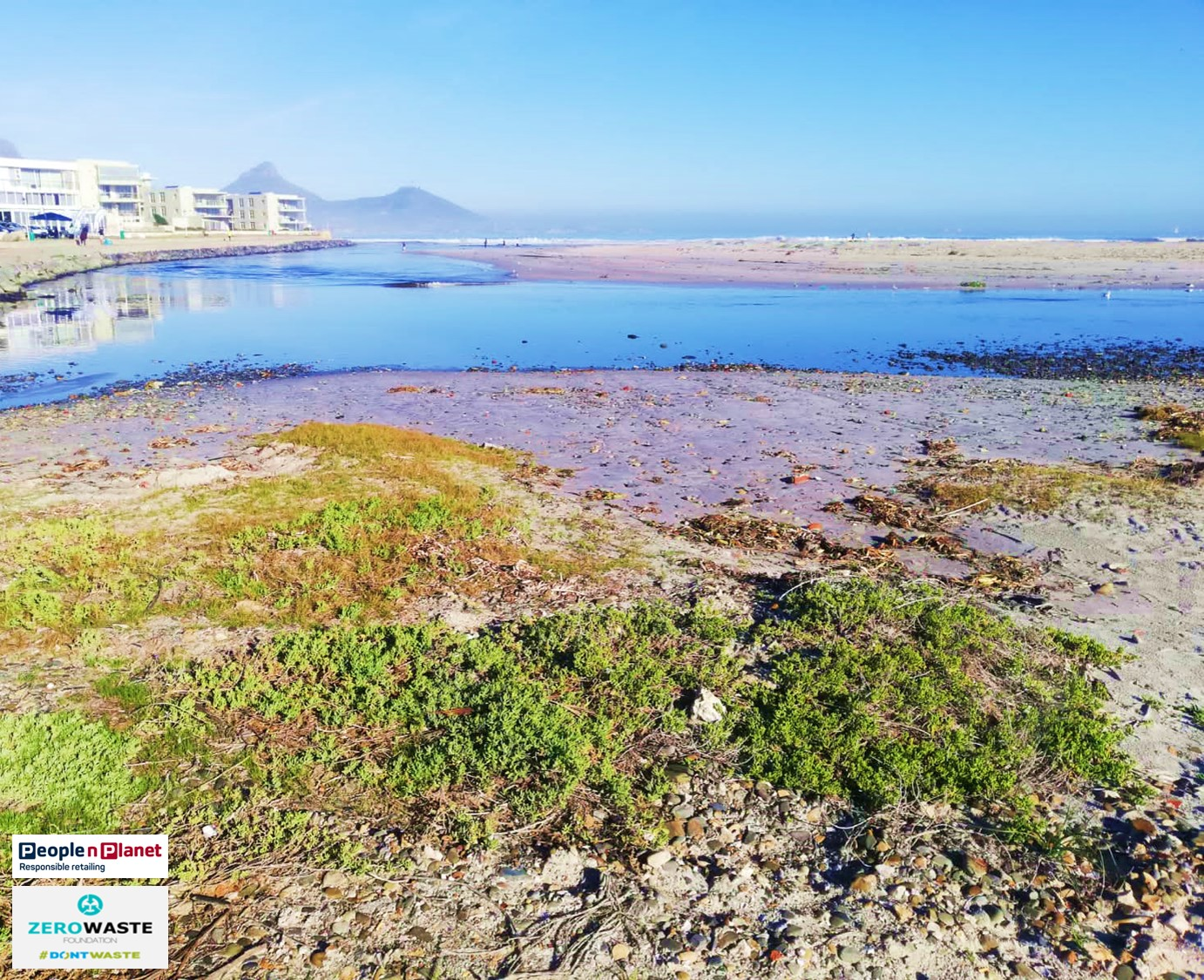 Clean Up at Milnerton Lagoon with PnP People n Planet